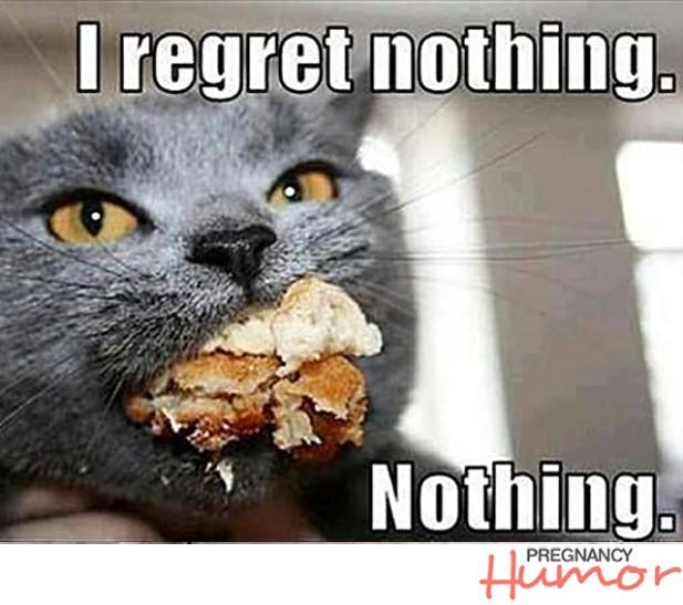 cat-eating-pregnancy-meme.jpg