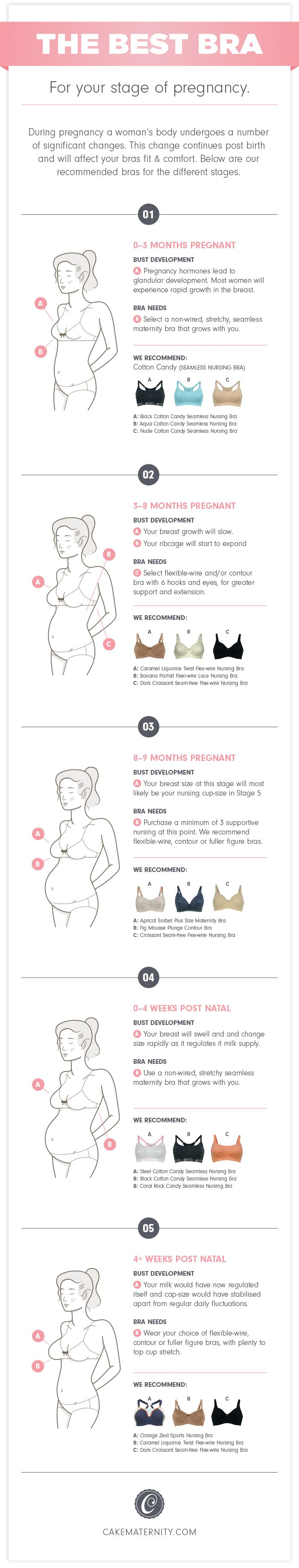 409e0c01334 ... bras-for-stages-infographic