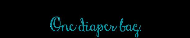 One diaper bag. .png