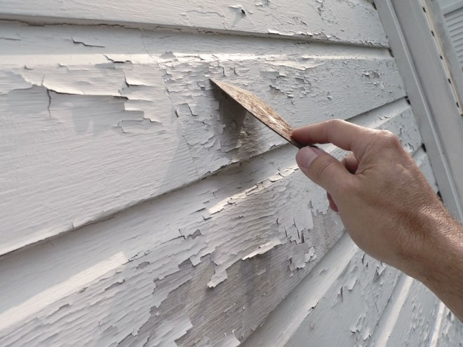 Scraping-Peeling-Paint.jpg