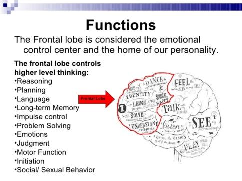 frontal-lobe-3-728.jpg